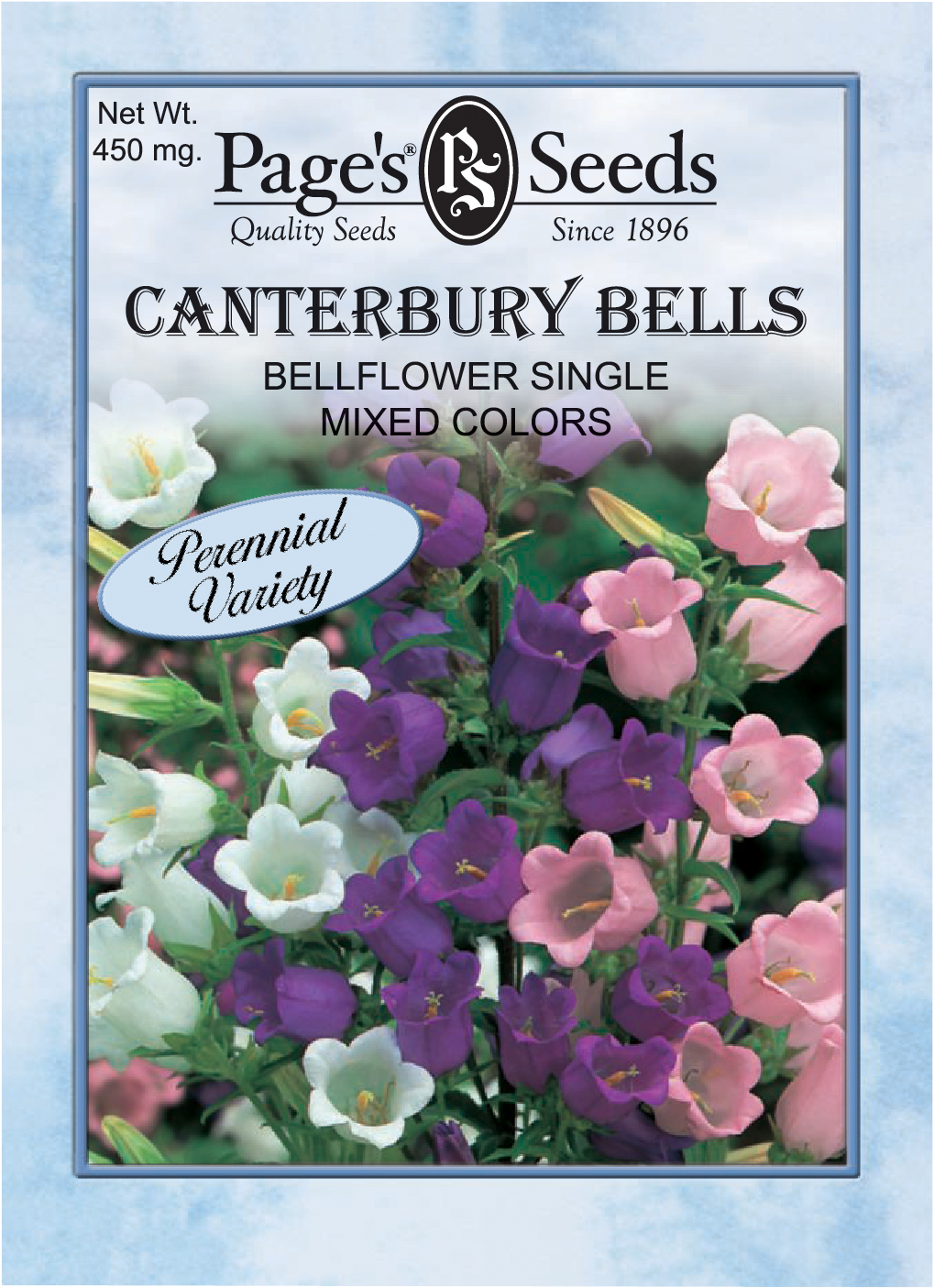 Canterberry Bell Flower Single Mix The Page Seed Company Inc