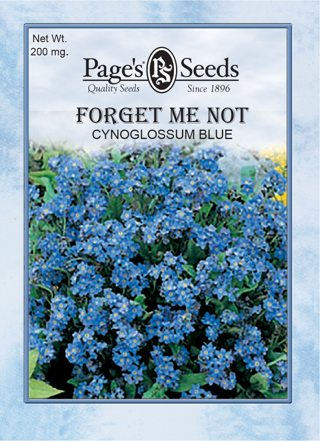 Forget Me Not Cynoglossum Blue The Page Seed Company Inc