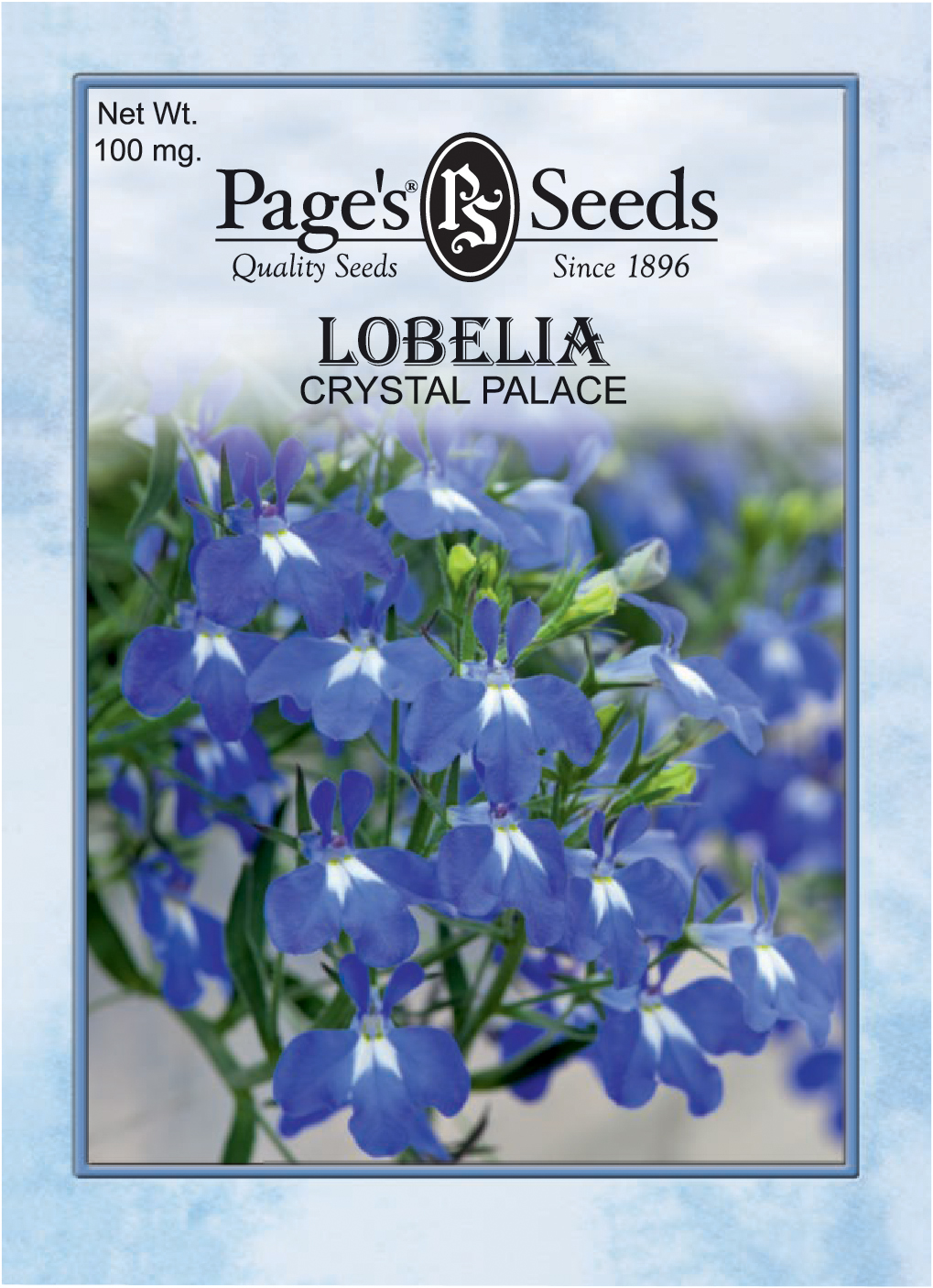 Lobelia Crystal Palace The Page Seed Company Inc